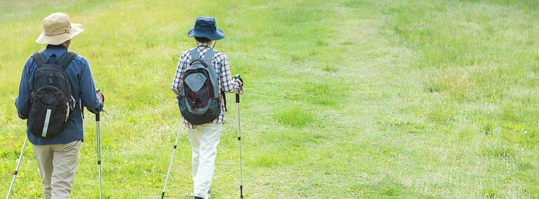 Take the Walking Challenge
